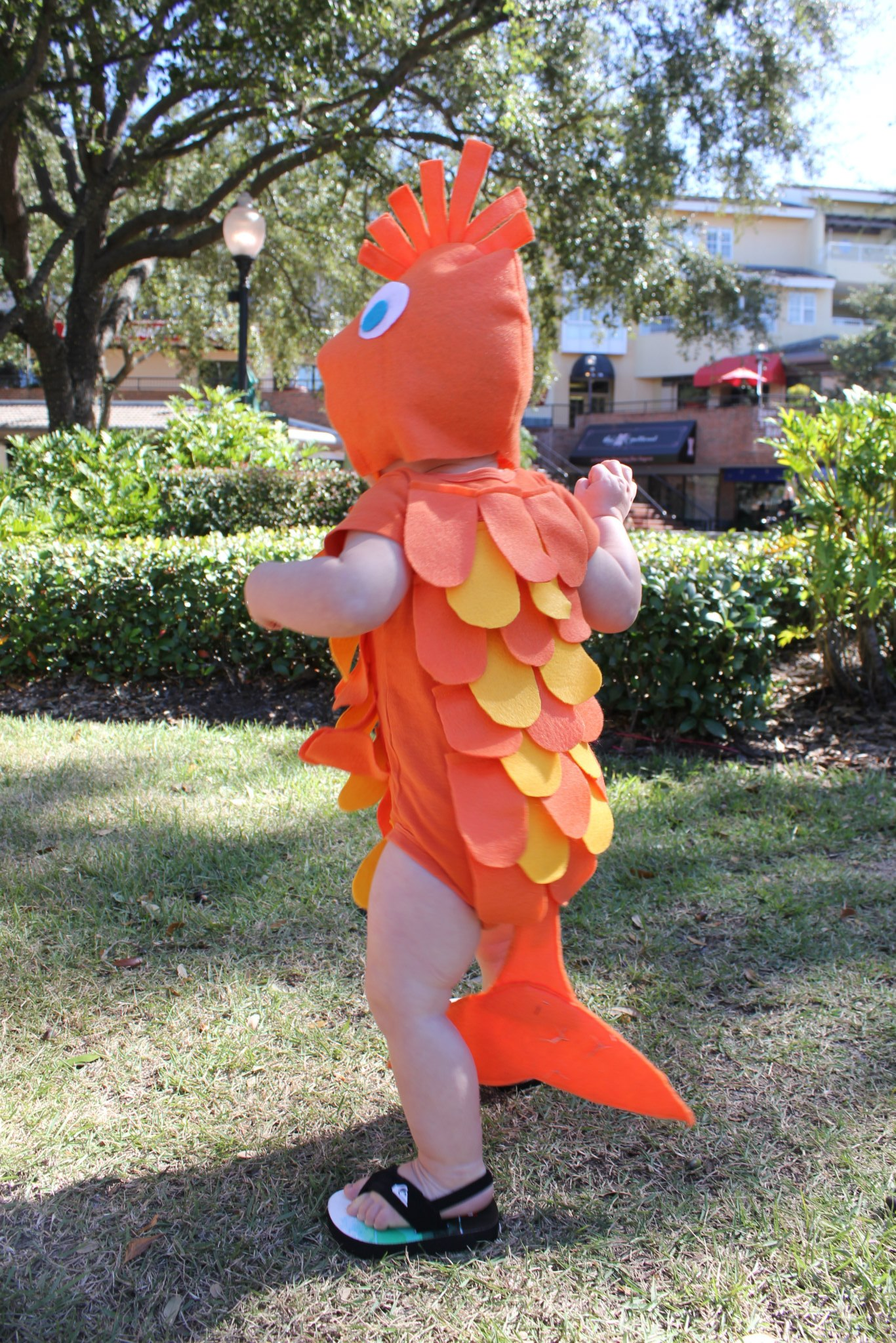 Less-Than-$7 DIY Family Fish Halloween Costume Idea SheJustGlows.com