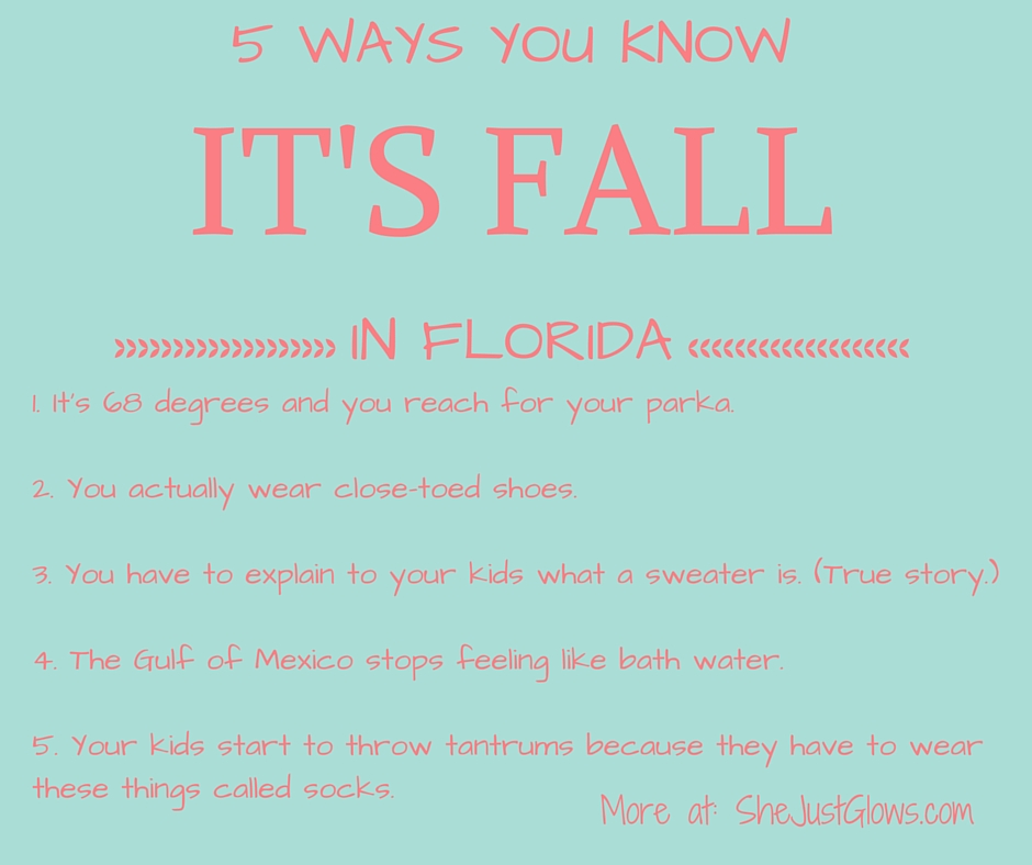 15 Ways You Know It's Fall in Florida SheJustGlows.com